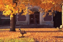Park benches covered in autumn leaves on UW campus