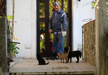 A middle-aged man stands facing the camera. He is on a porch in front of a residential door with three cats milling around his feet.